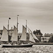 Tall Ship Schooner Pride Off The Historic Charleston Battery Print by Dustin K Ryan