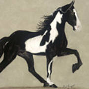 Tennessee Walker Print by Gail Finger