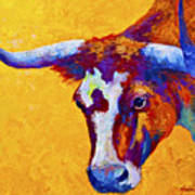 Texas Longhorn Cow Study Print by Marion Rose