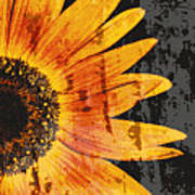 Textured Sunflower Print by Cathie Tyler
