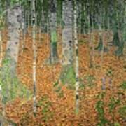The Birch Wood Print by Gustav Klimt