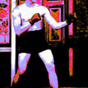 The Boxer - 20130207 Print by Wingsdomain Art and Photography