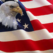 The Eagle Flag Print by Evelyn Patrick