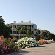 The Flowers At The Battery Charleston Sc Print by Susanne Van Hulst
