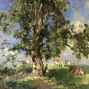 The Old Ash Tree Print by Edward Arthur Walton