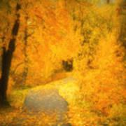 The Pathway Of Fallen Leaves Print by Tara Turner