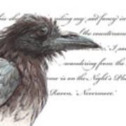 The Raven Print by Tahirih Goffic