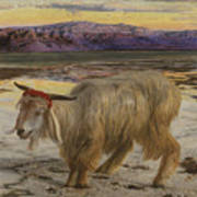 The Scapegoat Print by William Holman Hunt