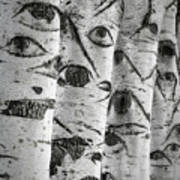 The Trees Have Eyes Print by Wim Lanclus