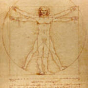 The Vitruvian Man Print by