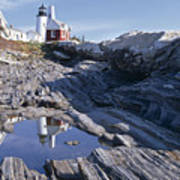Tide Pool Reflection Pemaquid Point Lighthouse Maine Print by George Oze