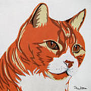 Tom Cat Print by Slade Roberts
