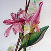 Torch Ginger  Lily Print by Karin  Dawn Kelshall- Best