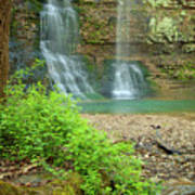 Tripple Falls In Springtime Print by Iris Greenwell