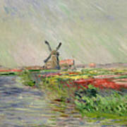 Tulip Field In Holland Print by Claude Monet