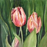 Tulips  Print by Irina Sztukowski