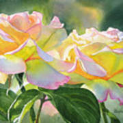 Two Peace Rose Blossoms Print by Sharon Freeman