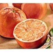 Vitamin C Print by Irina Sztukowski