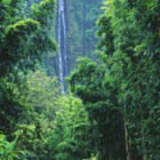 Waimoku Falls Print by Dave Fleetham - Printscapes