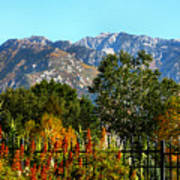 Wasatch Mountains In Autumn Print by Tracie Kaska