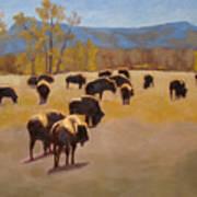 Where The Buffalo Roam Print by Tate Hamilton