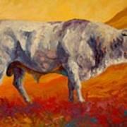 White Bull Print by Marion Rose