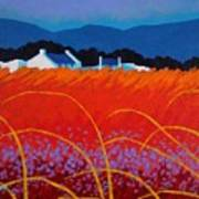 Wild Flowers County Wicklow Print by John  Nolan