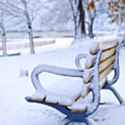 Winter Bench Print by Elena Elisseeva