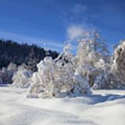 Winter Blanket Print by Mike  Dawson