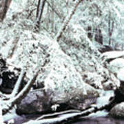 Winter In Shenandoah Print by Thomas R Fletcher