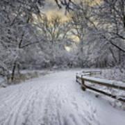 Winter Sunrise Print by Sebastian Musial