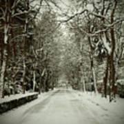 Winter Print by Thomas Maes