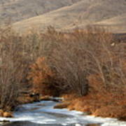 Winter Yakima River With Hills And Orchard Print by Carol Groenen