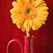Yellow Daisy In Red Vase Print by Garry Gay