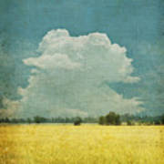 Yellow Field On Old Grunge Paper Print by Setsiri Silapasuwanchai
