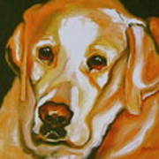Yellow Lab Amazing Grace Print by Susan A Becker
