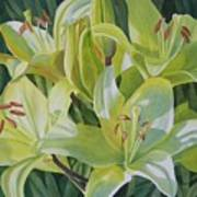 Yellow Lilies With Buds Print by Sharon Freeman