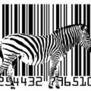 Zebra Barcode Print by Michael Tompsett