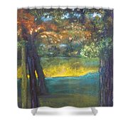 Blazing Autumn Light Shower Curtain by Sandra McClure
