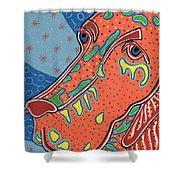 Folk Art Dog Doxiepoo Shower Curtain by Sarah  Niebank