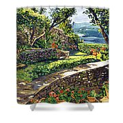 Garden Stairway Shower Curtain by David Lloyd Glover