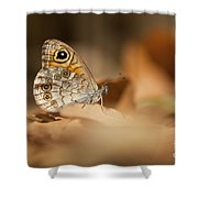 Lattice Brown Kirinia Roxelana Shower Curtain by Alon Meir