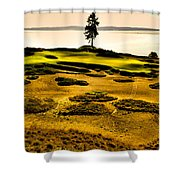 #15 At Chambers Bay Golf Course - Location Of The 2015 U.s. Open Tournament Shower Curtain by David Patterson
