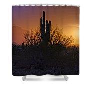 A Sonoran Morning  Shower Curtain by Saija  Lehtonen