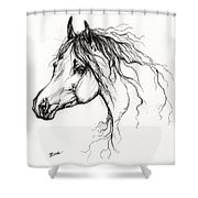 Arabian Horse Drawing 37 Shower Curtain by Angel  Tarantella
