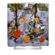 Autumn Shower Curtain by Daniel Janda