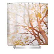 Beneath A Tree  14 5284  Diptych  Set 1 Of 2 Shower Curtain by Ulrich Schade