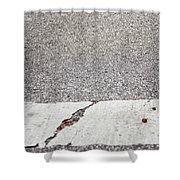 Cracked Shower Curtain by Margie Hurwich