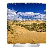 Desert landscape in Manitoba Shower Curtain by Elena Elisseeva