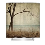 Drifting Shower Curtain by Amy Weiss